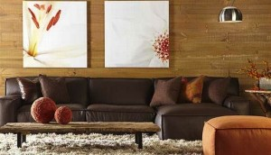 Collectic Home Furniture BEst Furnsiture Store in Austin