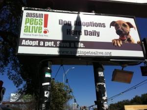 Billboard for Austin Pets Alive